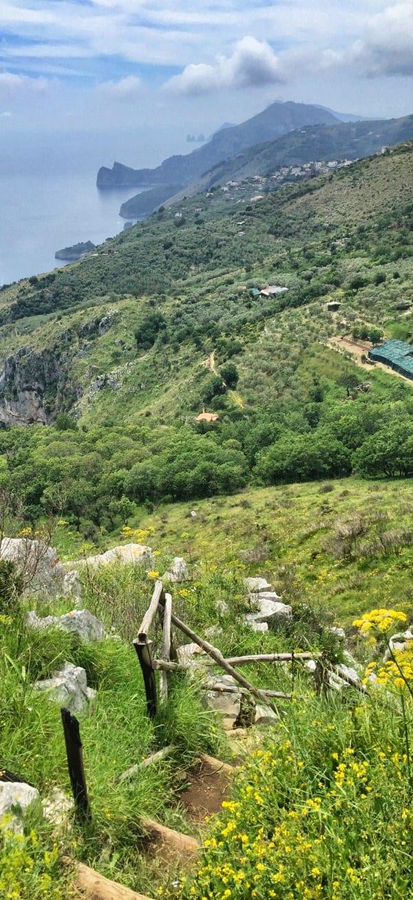 Wandern an der Amalfiküste Etappe 5 Capri und die markanten Felsspitzen im Blick